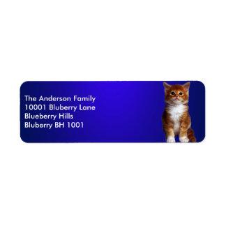 Blue Label Return Address Ginger Cat Return Address Label