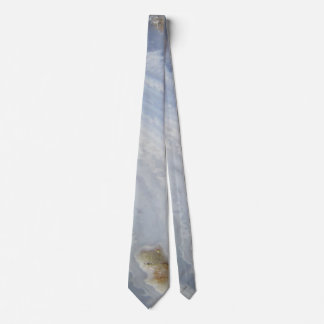 Blue Lace Agate Swirl cool nature stone Tie