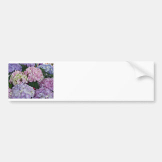 Blue Lavender Hydrangeas Bumper Sticker