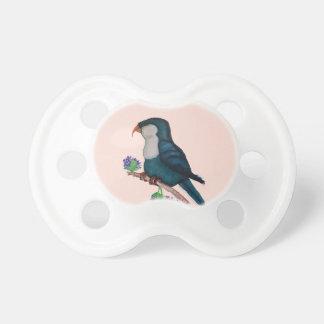 blue lorikeet parrot, tony fernandes baby pacifier