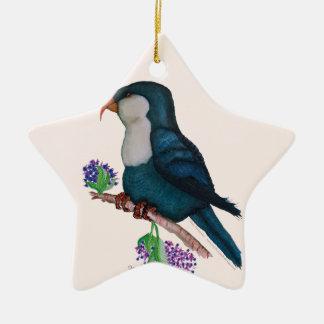 blue lorikeet parrot, tony fernandes ceramic star decoration
