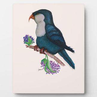 blue lorikeet parrot, tony fernandes plaque
