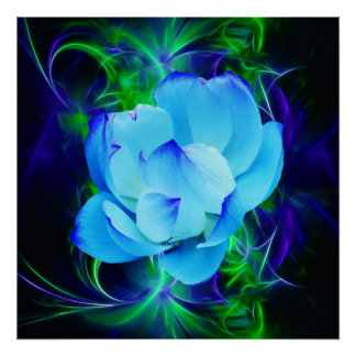 Blue lotus flower and its meaning posters