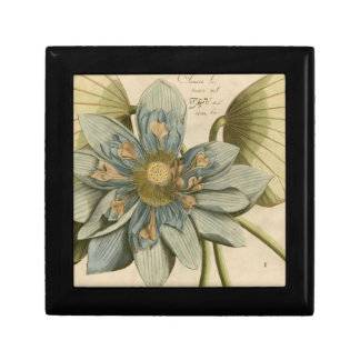 Blue Lotus Flower on Tan Background with Writing Gift Box