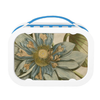 Blue Lotus Flower on Tan Background with Writing Lunch Box