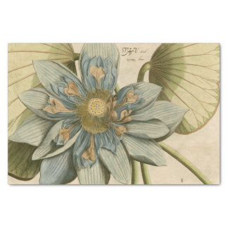 Blue Lotus Flower on Tan Background with Writing Tissue Paper