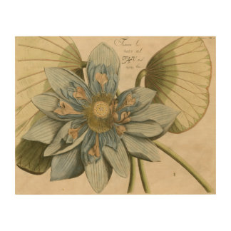 Blue Lotus Flower on Tan Background with Writing Wood Wall Art