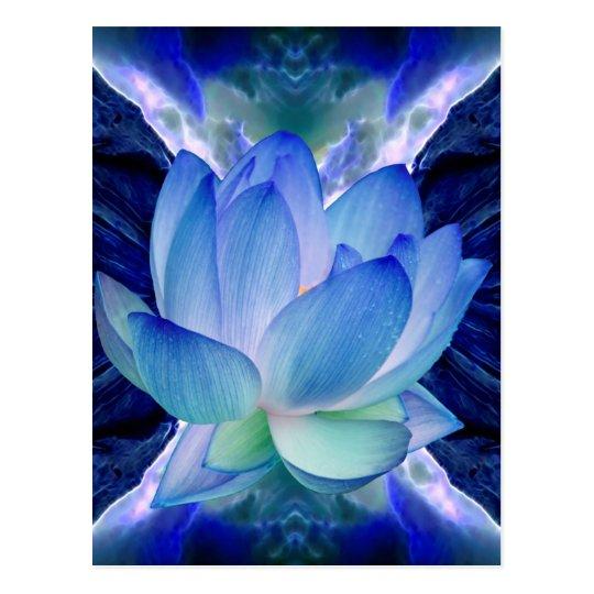 Blue lotus lily postcard
