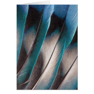 Blue Love Bird Feather Design Card