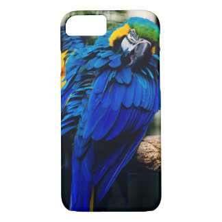 Blue Macaw Parrot, Exotic Tropical Bird iPhone 7 Case