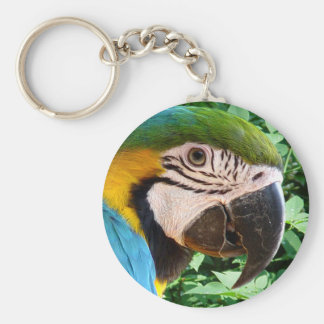 Blue Macaw Parrot Keychain