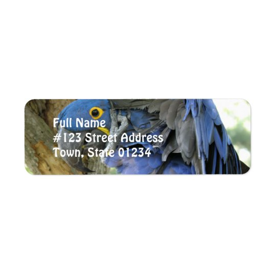 Blue Maccaw Return Address Label