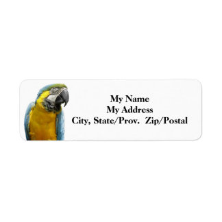 Blue Mackaw Label Return Address Label