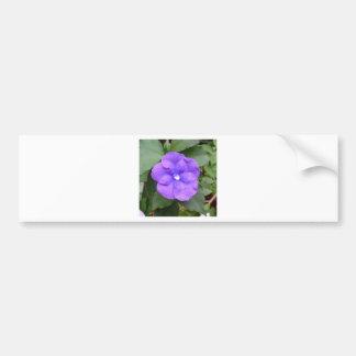 Blue Macro Flower Bumper Stickers