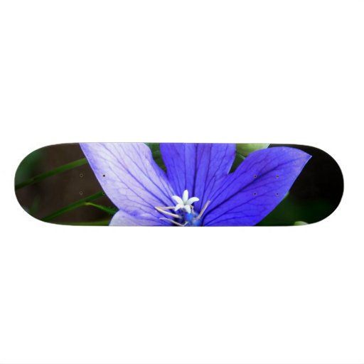 Blue Macro Flower Skateboard