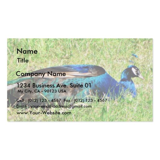 Blue Male Peacock Business Card