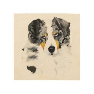 "Blue Merle Aussie Dog 8""x8"" Wood Photo Print Wood Canvas"