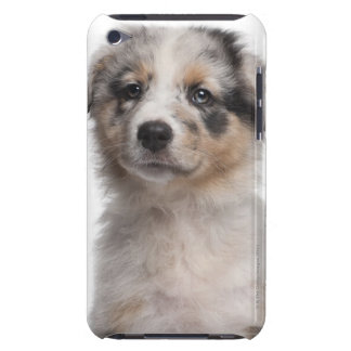Blue Merle Australian Shepherd puppy close-up iPod Touch Case-Mate Case