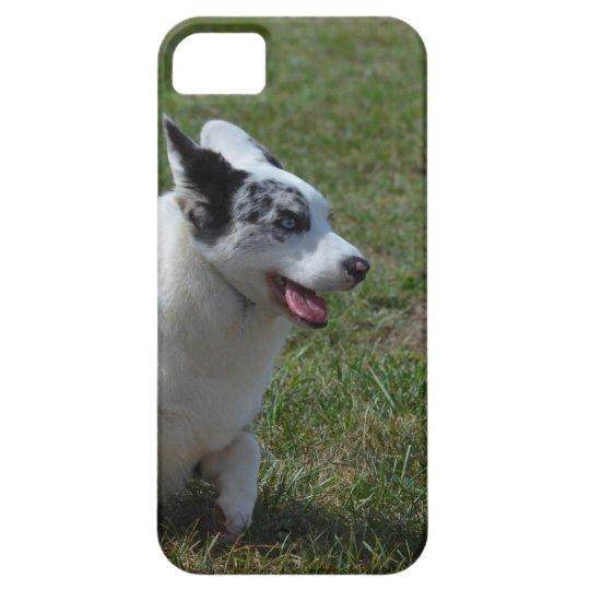 Blue Merle Corgi Dog Barely There iPhone 5