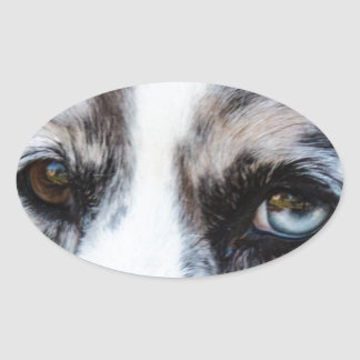 Blue Merle Dog Oval Stickers