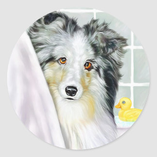 Blue Merle Sheltie Bath Classic Round Sticker