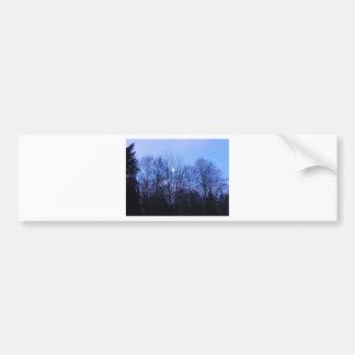 Blue Moon Wedding Papers Bumper Sticker