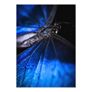 Blue Morpho butterfly closeup 13 Cm X 18 Cm Invitation Card