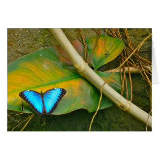 BLUE MORPHO BUTTERFLY NOTECARD GREETING CARD