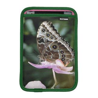 Blue Morpho Butterfly Sleeve For iPad Mini