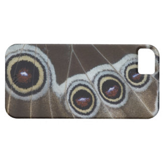 Blue Morpho, Morpho menelaus, adult newly Case For The iPhone 5