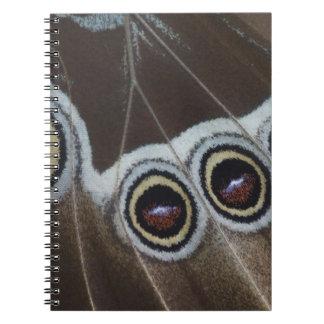 Blue Morpho, Morpho menelaus, adult newly Notebook