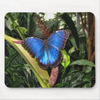Blue Morpho Peleides Mouse Mat