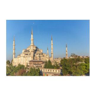 Blue Mosque Landscape Acrylic Wall Art