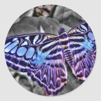 Blue Moth Round Sticker