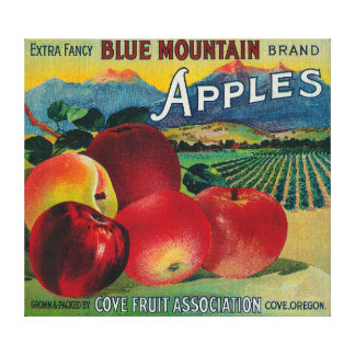 Blue Mountain Apple Crate LabelCove, OR Canvas Print