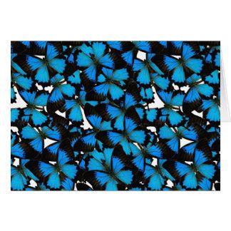 Blue Mountain Swallowtail Note Card