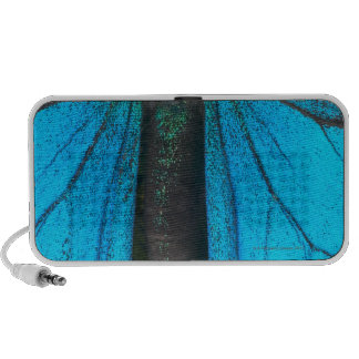 Blue mountain swallowtail Papilio ulysses iPod Speaker