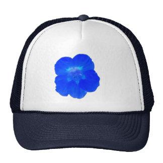 Blue Nasturtium Hat