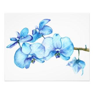 Blue Orchid Botanical Print