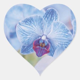 Blue Orchids Heart Sticker