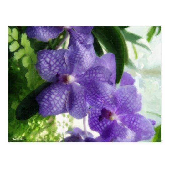 Blue Orchids Painterly Postcard