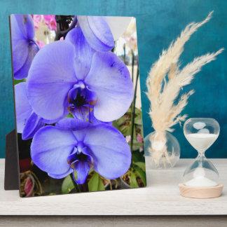 Blue Orchids Plaque