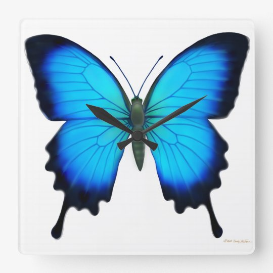 Blue Papilio Ulysses Butterfly Wall Clock