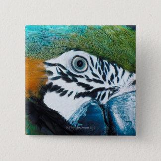 Blue Parrot 15 Cm Square Badge