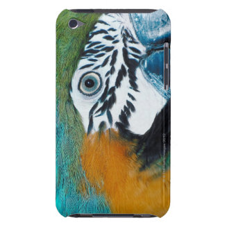 Blue Parrot Barely There iPod Cover