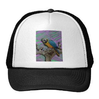 Blue Parrot & Palms hat