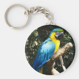 Blue Parrot Perch Key Chain