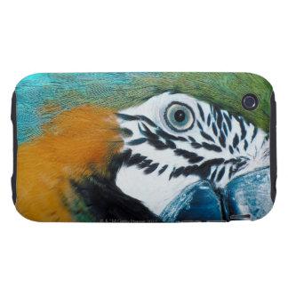 Blue Parrot Tough iPhone 3 Cover