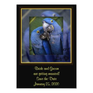 "Blue Parrot Wedding 5"" X 7"" Invitation Card"