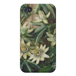 Blue Passion Flower for the 'Temple of Flora' by R iPhone 4/4S Covers